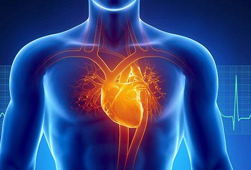 SAC & Heart Health