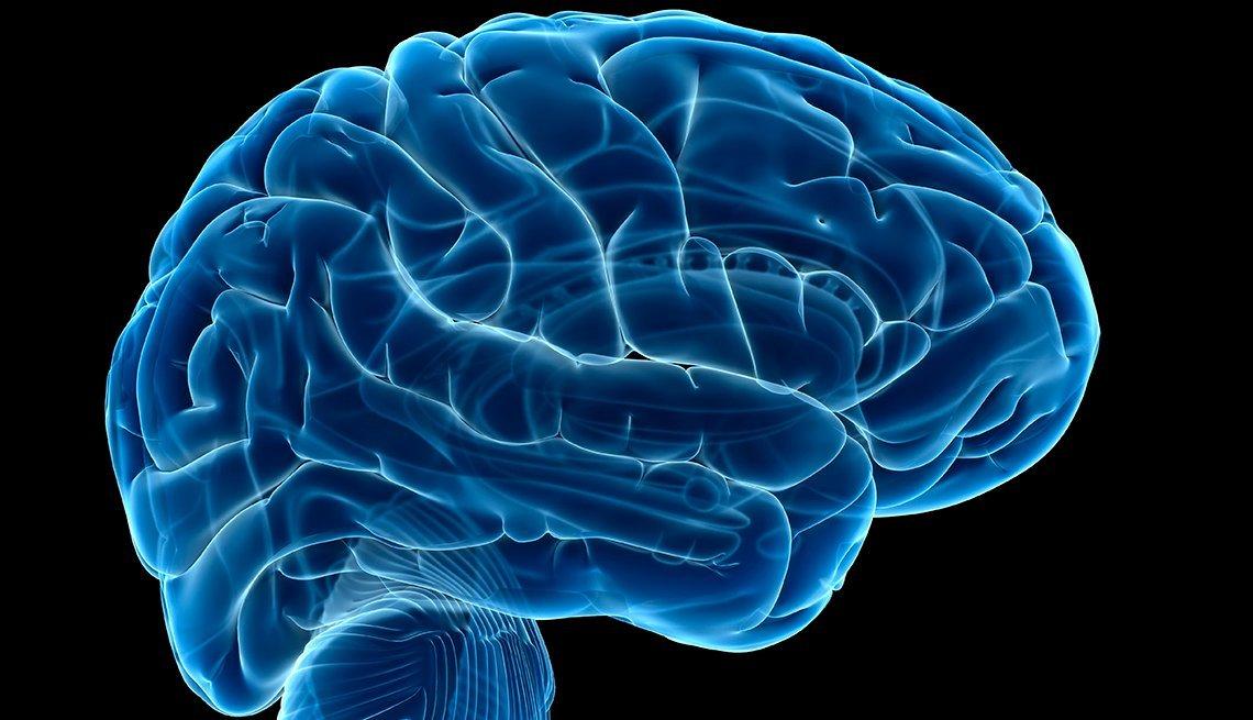 SAC & Brain Health